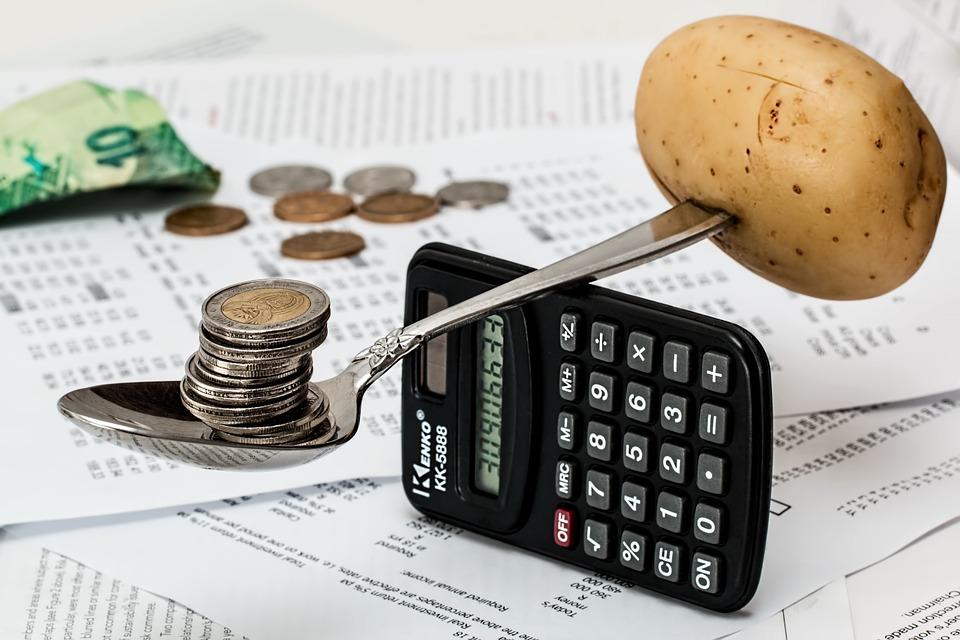 Att göra upp en hushållsbudget